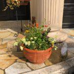 好きな匂いとか、好きな色で庭づくりをしませんか?それこそが人生の彩りだと思うのです。